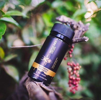 Southern Orchard Beetle Juice vapors